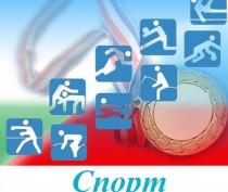 Минспорта Крыма предложило депутатам взять под патронат спортшколы