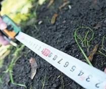 Служба земельного надзора насчитала в Крыму 37 тыс га неиспользуемых сельхозземель, находящихся в госсобственности