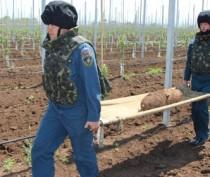Крымские спасатели обезвредили фугасную авиабомбу, найденную в саду