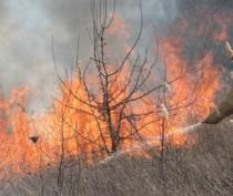 Пожарная охрана Крыма за прошлые выходные ликвидировала шесть возгораний травы и два пожара