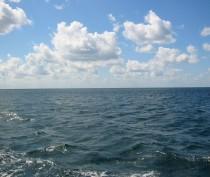Сотрудники Крымской транспортной прокуратуры выясняют обстоятельства нахождения затонувшего плавкрана у берегов Ялты