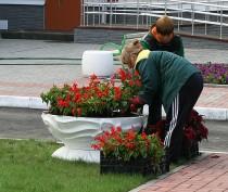 МинЖКХ Крыма проводит конкурс «Самый благоустроенный населенный пункт Республики Крым»