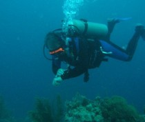 Водолазы «Крым-Спаса» начали обследование акватории пляжей