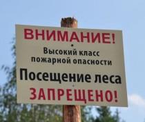 Посещение лесов в Крыму ограничено до конца августа