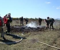 МЧС тушило пожар в лесу