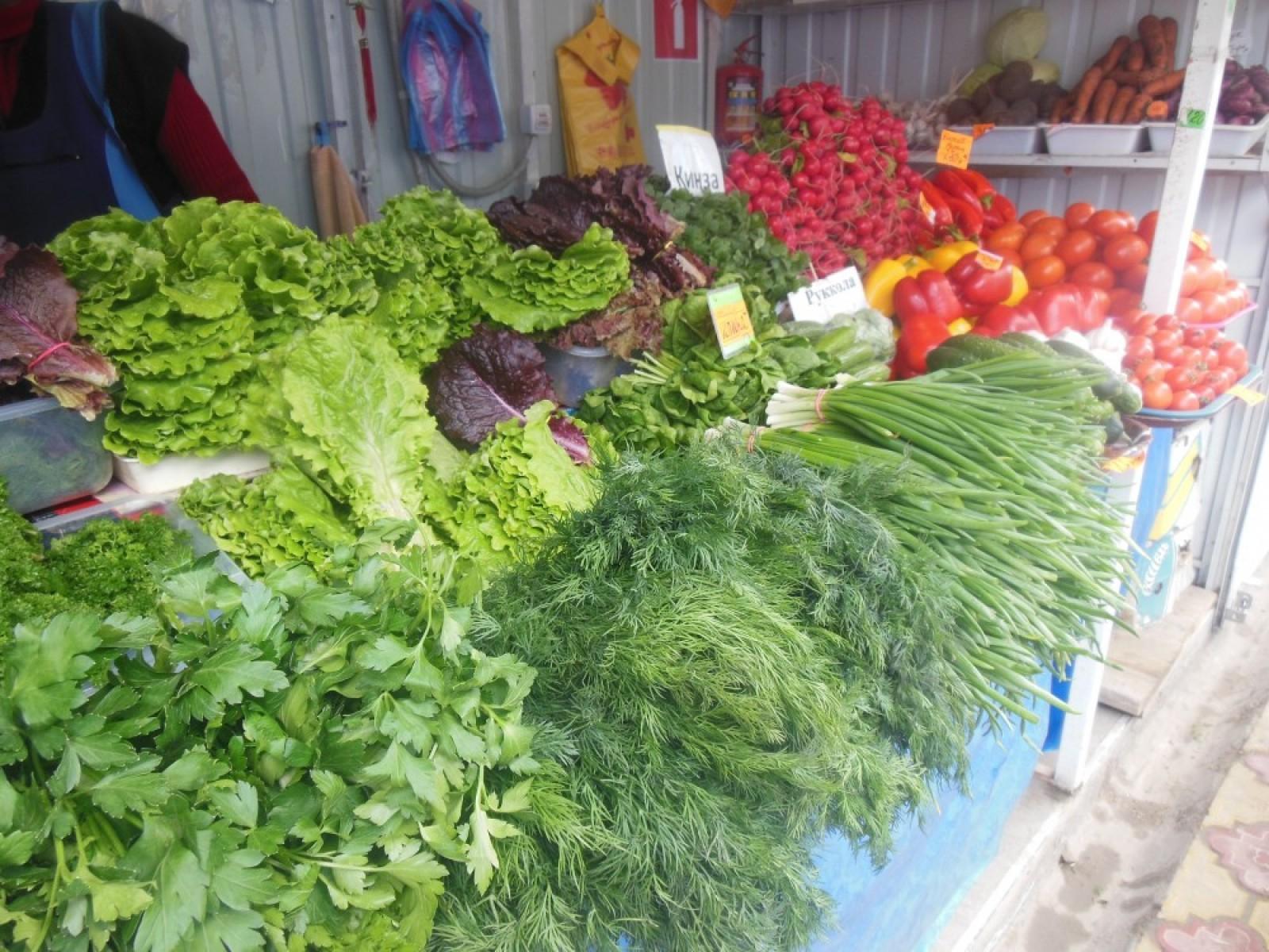 Выращивание и продажа свежей зелени (укропа, зеленого лука) 80