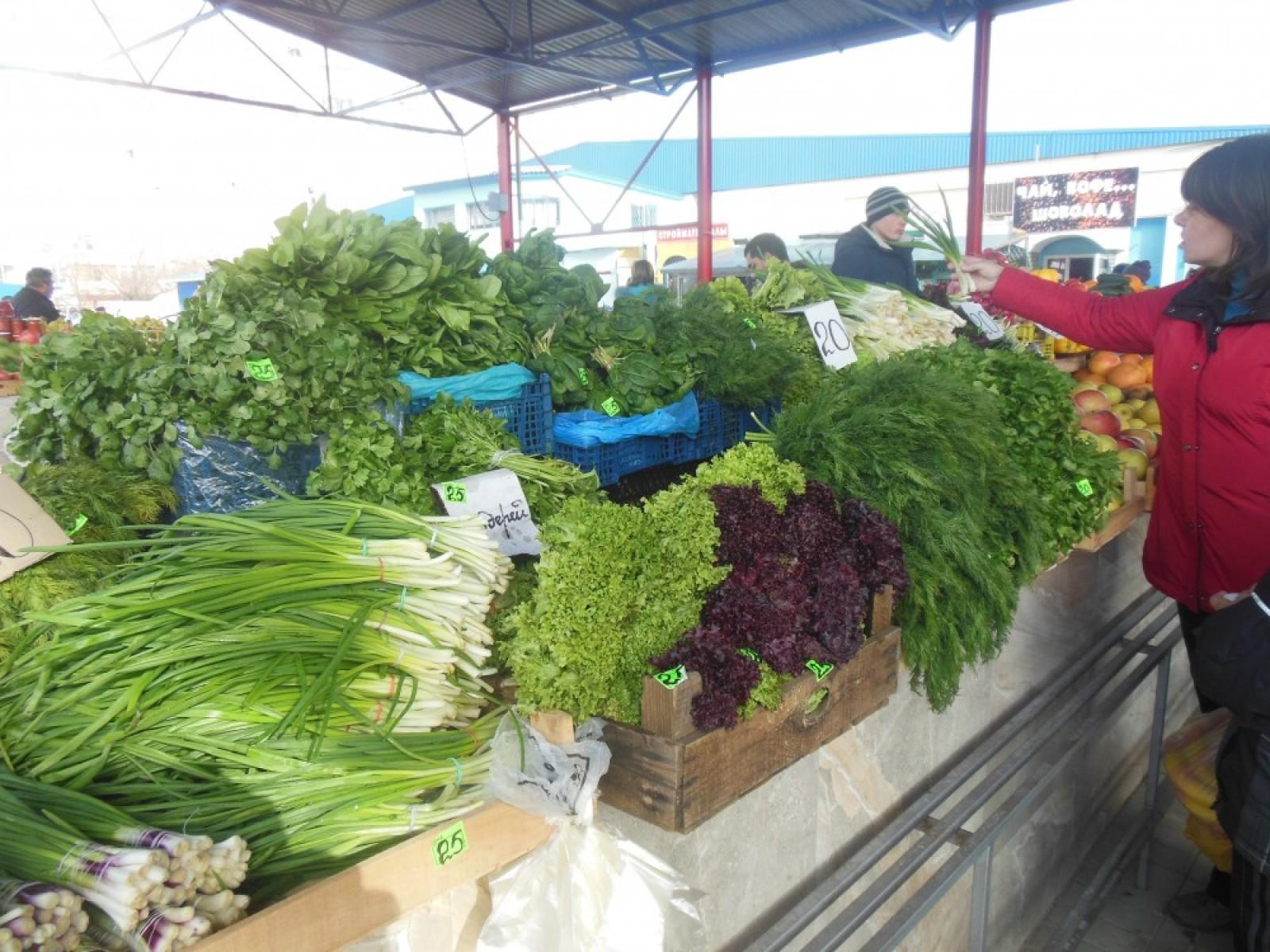 Прибыльный бизнес: выращивание зелени на продажу 5