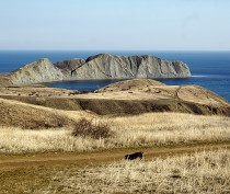 Новости Феодосии: Мартовский поход в Тихую бухту