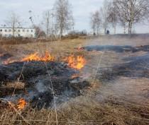 Новости Феодосии: Из-за неубранной вовремя травы феодосийские спасатели 40 раз выезжали на пожары