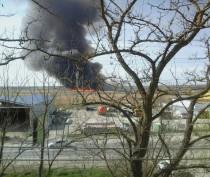 Новости Феодосии: В Феодосии 7 часов горел камыш (ФОТО)