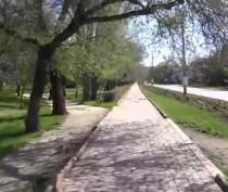 В Феодосии стартует проект по благоустройству парков