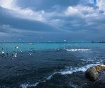 Новости Феодосии: Коротко о погоде в Феодосии