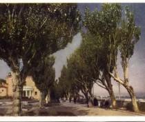 Новости Феодосии: Феодосия и горожане. Архивные фотографии