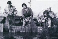 Новость. Город: Феодосия - История рыболовства в Феодосийском заливе