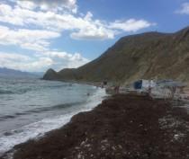 Новости Феодосии: Под Феодосией морские волны вымыли с пляжа теневые зонты (ФОТОФАКТ)