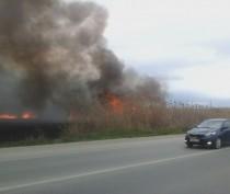Экстренное предупреждение: в Крыму сохраняется пожарная опасность