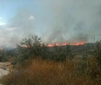 Спасатели тушили пожар в зоне бывшей АЭС в Щелкино