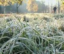 МЧС предупредило о возможных заморозках на грунте в Крыму