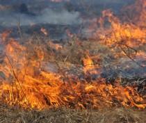 Под Феодосией в садовом товариществе горело заброшенное здание и трава