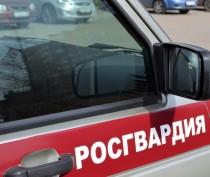Росгвардия создаст морскую бригаду для охраны Крымского моста