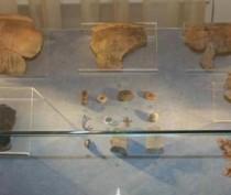 Сразу две необычные выставки представят в Историко-археологическом музее Керчи