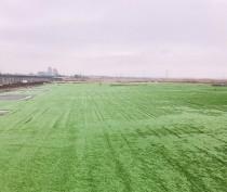 В Керчи заканчивают стелить искусственное покрытие на новом  футбольном поле