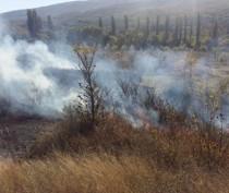 В Коктебеле снова горела сухая растительность