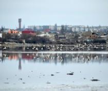Начало февраля. пос. Приморский. Озеро Аджиголь.