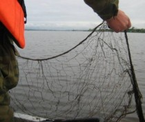 Под Феодосией пограничники задержали рыбака с 4-килограммовой краснокнижной белугой