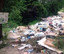 Власти Феодосии призывают жителей активнее сообщать о стихийных свалках