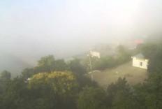 Приморский. Веб-камера Приморского - Приморский - Набережная